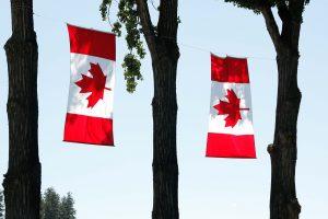 Статистика получения ПМЖ в Канаде