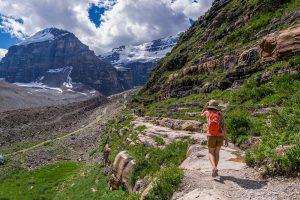 International Experience Canada приглашено еще 4174 человека