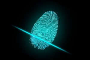 Новые правила по иммиграции биометрия и флегполлинг