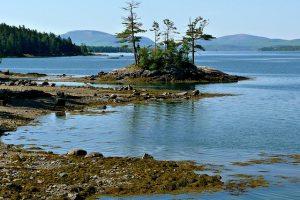 Остров Принца Эдуарда пригласил еще 111 человек