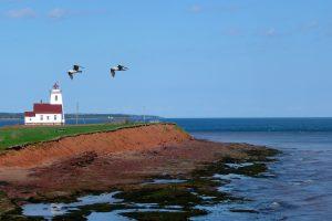 Иммиграция на Остров Принца Эдуарда - новый отбор