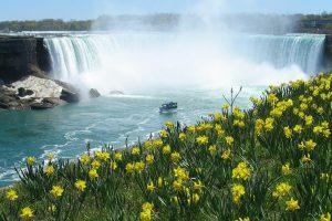 Иммиграция в Канаду — Дайджест новостей за 23-27 февраля