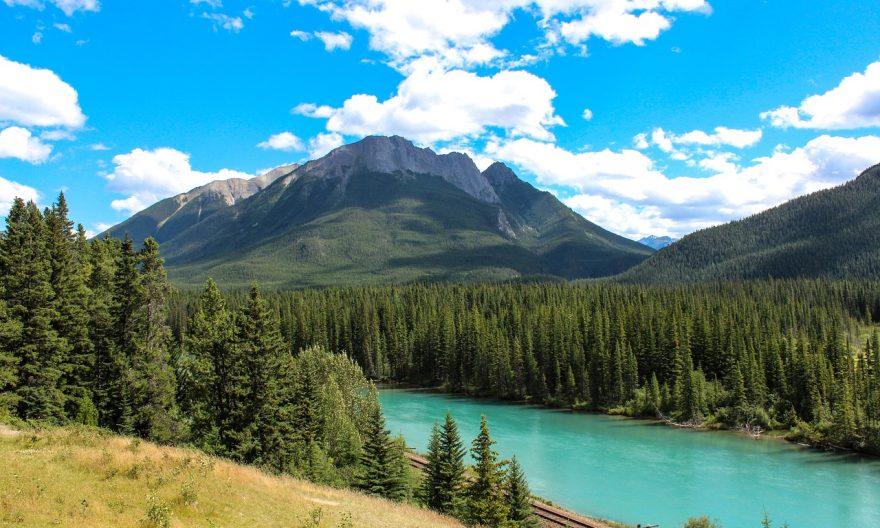 Иммиграция в Альберту 1150 заявок в AINP находятся на рассмотрении