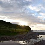 Новая Шотландия обновила списки назначенных работодателей в AIPP
