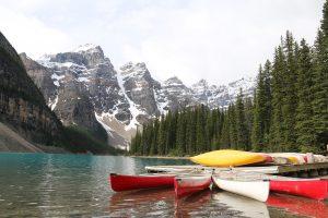 Альберта - идеальная провинция для помощи беженцам