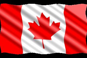 Протест за возобновление проверки на гражданство в Торонто