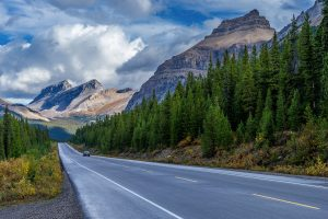 Альберта пригласил 200 кандидатов в Alberta Express Entry в AINP