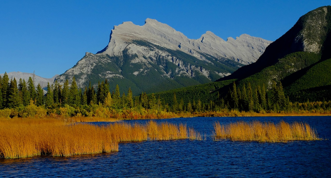 Альберта пригласила 159 кандидатов в Alberta Express Entry в AINP