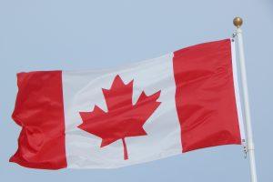 Канада представила новое руководство касательно выдачи TRV