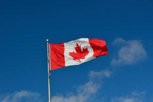 Эвакуация афганских беженцев в Канаду продолжается